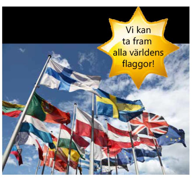 varldens-flaggor
