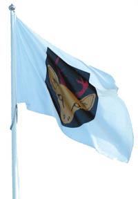flagga Lekeberg